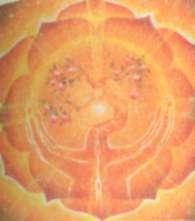 золотисто-желтый цветок лотоса с двенадцатью лепестками