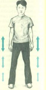 Вибрационные упражнения